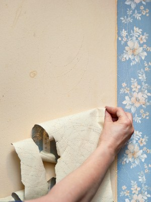 Wallpaper removal by Fellman Painting & Waterproofing.
